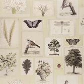 Designers Guild Flora and Fauna - Canvas